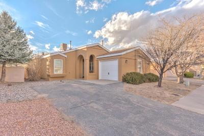 Rio Rancho Single Family Home For Sale: 1008 Harrison Drive NE