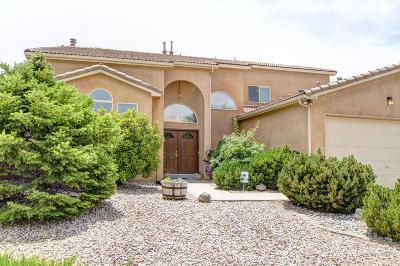 rio ran Single Family Home For Sale: 3880 Bay Hill Loop SE