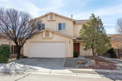 Albuquerque Single Family Home For Sale: 6916 Shale Avenue NE