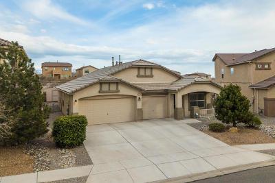 Rio Rancho Single Family Home For Sale: 2224 Las Brisas Circle SE