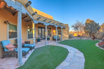 Placitas Single Family Home For Sale: 115 Placitas Trails Road
