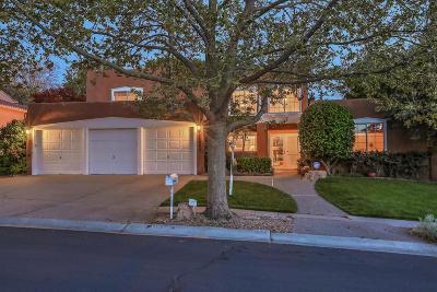 Albuquerque Single Family Home For Sale: 11904 Persimmon Drive NE