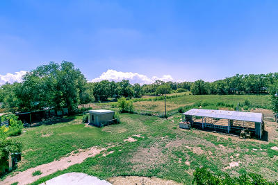 Albuquerque Farm & Ranch For Sale: 1450 Saunders Drive SW