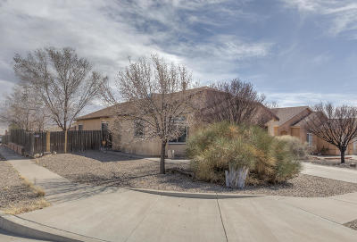 Rio Rancho Single Family Home For Sale: 4764 Delaina Drive NE