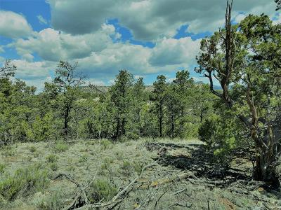 Catron County Residential Lots & Land For Sale: 2 Carson Drive