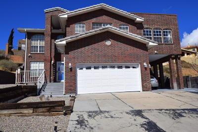 Albuquerque Single Family Home For Sale: 5223 La Bajada Road NW