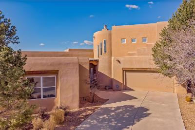 Single Family Home For Sale: 12707 Desert Sky Avenue NE