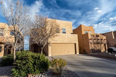 Rio Rancho Single Family Home For Sale: 1314 Mountain Vista Drive SE