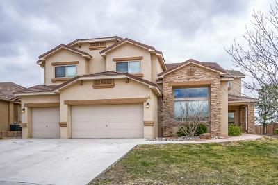 Rio Rancho Single Family Home For Sale: 4312 Cholla Drive