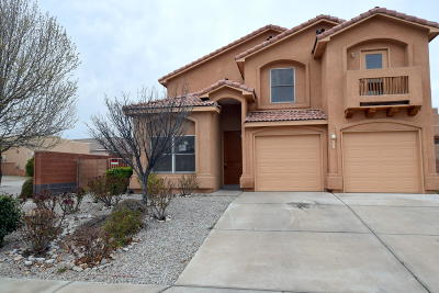 Albuquerque Single Family Home For Sale: 801 Tumulus Drive NW