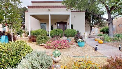 Albuquerque Single Family Home For Sale: 4209 Via De Luna NE