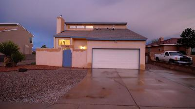 Albuquerque Single Family Home For Sale: 7308 Staghorn Drive NW