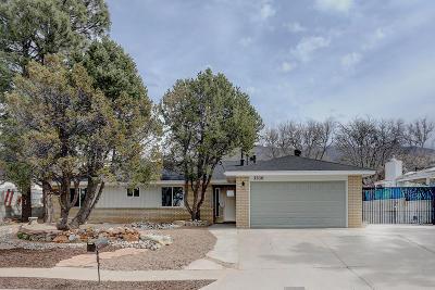 Albuquerque Single Family Home For Sale: 1516 Cedar Ridge Drive NE