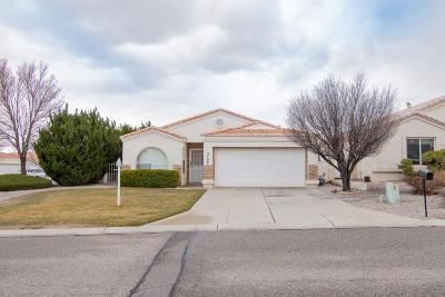 Rio Rancho Single Family Home For Sale: 3100 Calle Suenos SE