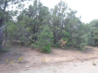 Tijeras Residential Lots & Land For Sale: 26 Granny Canyon Trail