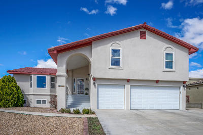 Albuquerque Single Family Home For Sale: 5405 Arabian Drive