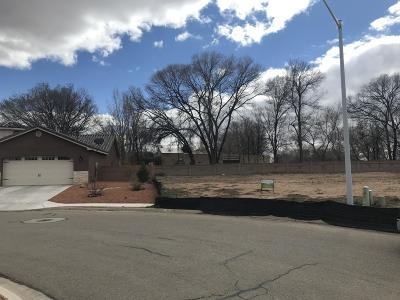 Valencia County Residential Lots & Land For Sale: 263 Dennis Drive NE