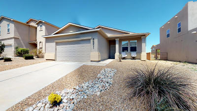 Valencia County Single Family Home For Sale: 3540 Lone Tree Street SW