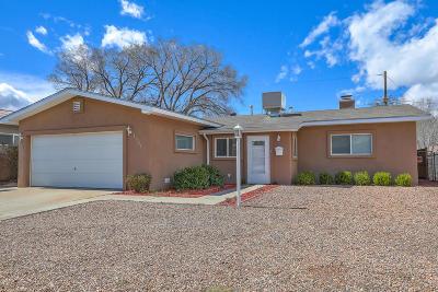 Bernalillo County Single Family Home For Sale: 1521 Elizabeth Street NE