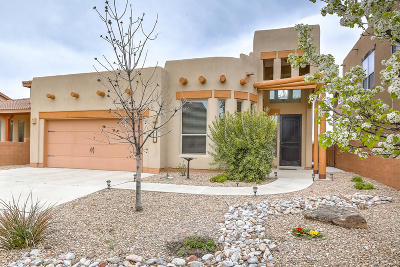 Bernalillo Single Family Home For Sale: 1228 Fig Springs Drive NW