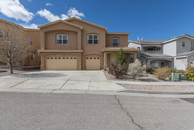 Albuquerque Single Family Home For Sale: 1847 Bold Ruler Street SE