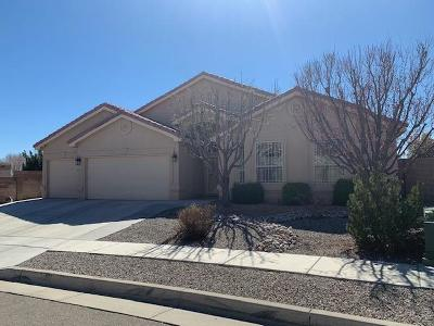 Bernalillo County Single Family Home For Sale: 8600 Warm Springs Road NW