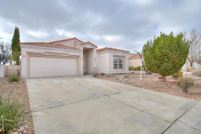 Albuquerque, Rio Rancho Single Family Home For Sale: 3217 Calle Suenos SE