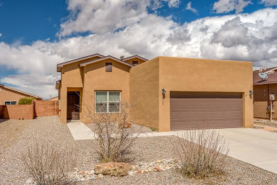 Rio Rancho Single Family Home For Sale: 4731 Big Hawk Road NE