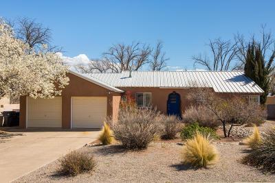 Albuquerque Single Family Home For Sale: 318 Aliso Drive SE