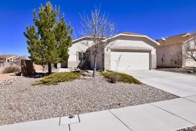 Rio Rancho Single Family Home For Sale: 155 Las Ramblas Avenue NW