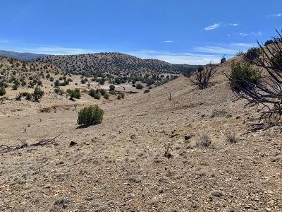 Socorro County Residential Lots & Land For Sale: 59 Abbe Springs Ranches