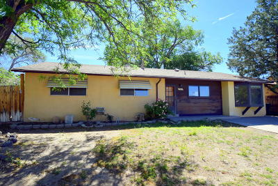 Albuquerque Single Family Home For Sale: 512 Hillview Court NE