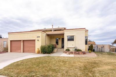 Bernalillo County Single Family Home For Sale: 5405 Camino Montano NE