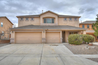 Bernalillo County Single Family Home For Sale: 8019 Corn Mountain Place NW