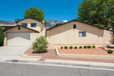 Albuquerque Single Family Home For Sale: 1404 Stutz Drive NE