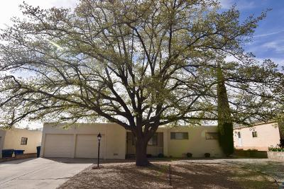 Albuquerque Single Family Home For Sale: 9601 Parsifal Place NE