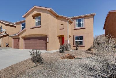 Albuquerque Single Family Home For Sale: 10436 Calle Perdiz NW