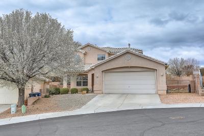 Albuquerque Single Family Home For Sale: 3905 Rancho Vistoso NW