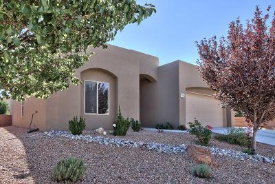 Albuquerque Single Family Home For Sale: 4700 Marbella Drive NW