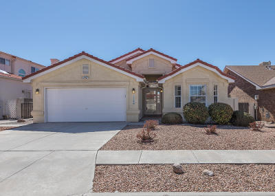 Albuquerque Single Family Home For Sale: 11508 Canyonlands Road SE