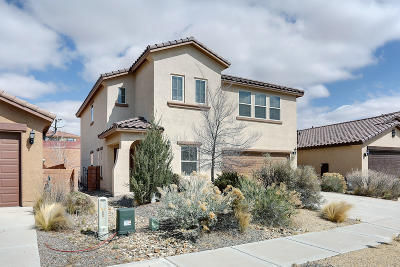 Rio Rancho Single Family Home For Sale: 4007 Sierra Alta Avenue NE