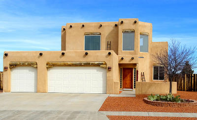 Albuquerque Single Family Home For Sale: 5119 Willow Creek Place NW
