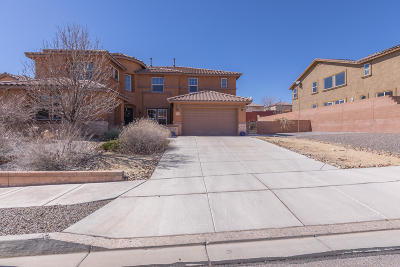 Rio Rancho Single Family Home For Sale: 101 Los Miradores Drive NE