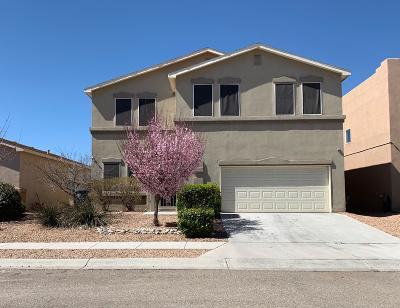 Albuquerque Single Family Home For Sale: 3127 Cricket Place SW