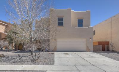 Rio Rancho Single Family Home For Sale: 3236 Zia Street NE