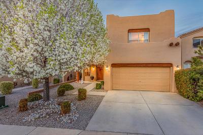 Albuquerque Single Family Home For Sale: 6715 Glenlochy Way NE
