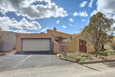 Bernalillo County Single Family Home For Sale: 1856 Tramway Terrace Loop NE