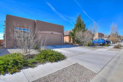 Albuquerque Single Family Home For Sale: 5620 Bald Eagle Road NW