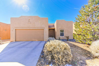Albuquerque Single Family Home For Sale: 6524 Ancients Road NW