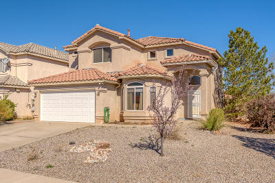 Sandoval County Single Family Home For Sale: 4401 Snow Heights Circle SE